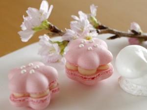 マールブランシュ  四季のマカロン桜