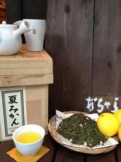 日本茶専門店おちゃらか  夏みかん