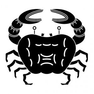 蟹紋 CRAB